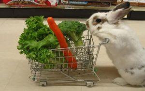 Shopping for my 5 a day.