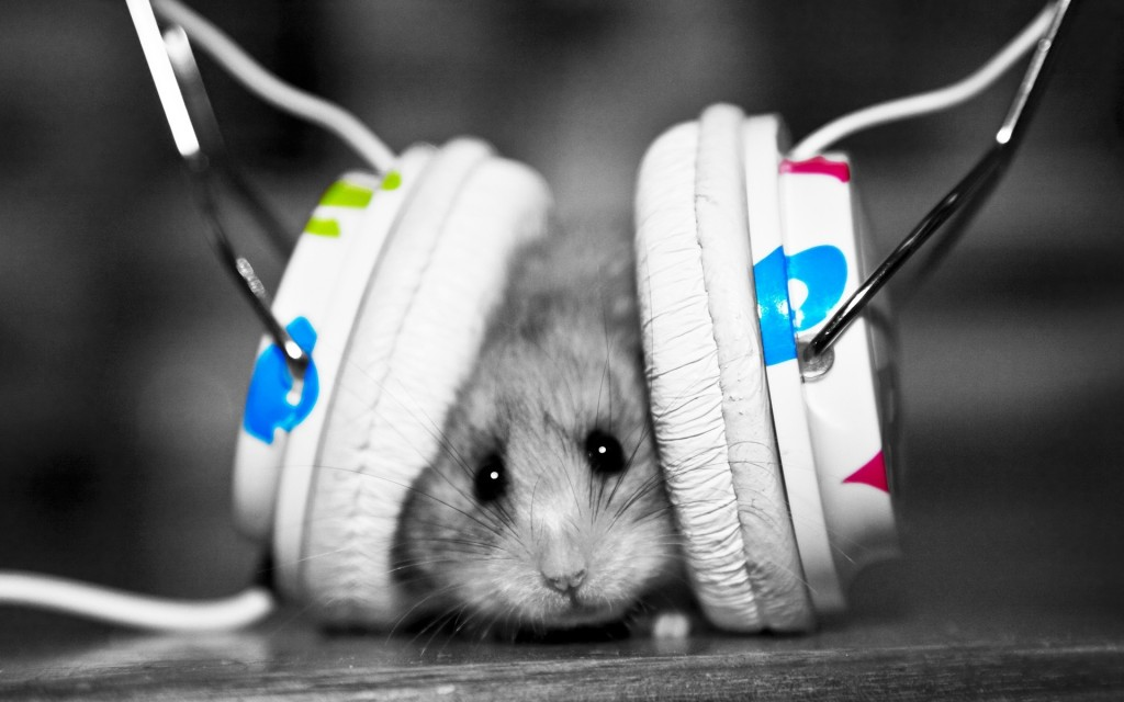 Just chillin', listening to my beats.